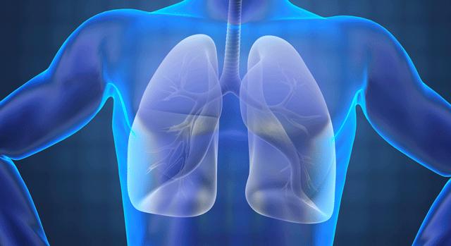 respiratory care manatee memorial hospital
